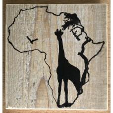 Afrika - Giraf