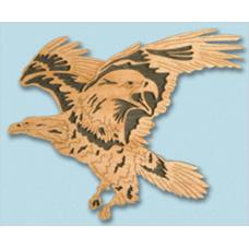 Bald Eagle Nature's Majestic