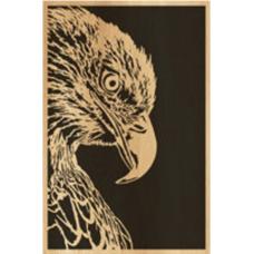 Eagle (10)