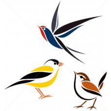Drie Vogels 1