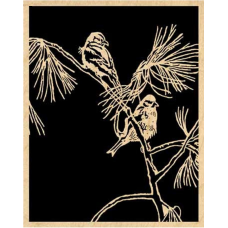 Birds in Pine