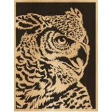 Owl (6)