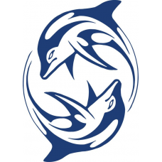 Dolfijnen 1