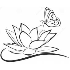 Lotus met vlinder