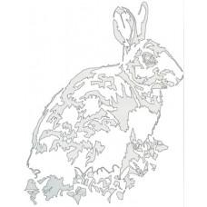 Rabbit - Cottontail fields