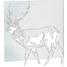 Buck - Whitetail Stag