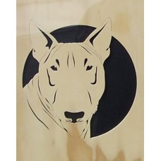 Bull Terrier 2