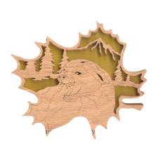 Mountain Lion (FL160)