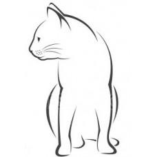 Kat 7