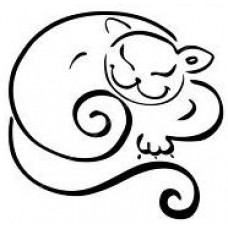Lachende Kat 3