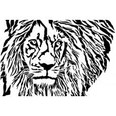 Leeuw 11