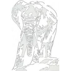Elephant on the move