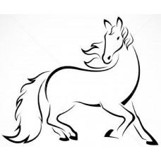 Paard 10