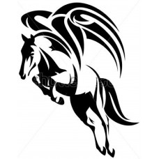 Paard 11