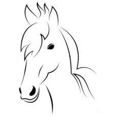 Paard 14