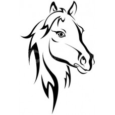 Paard 16
