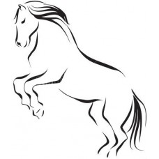 Paard 17