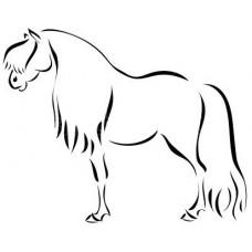 Paard 20