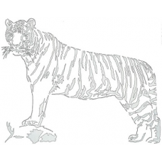 Tiger - Savage Stripes