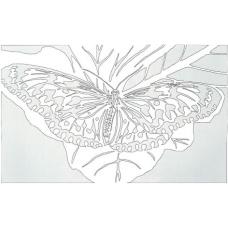 Butterfly - Winged Beauty