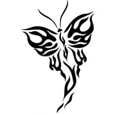 Vlinder 5